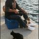 Visser op Karpathos