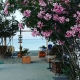 Lambi strand op Kos